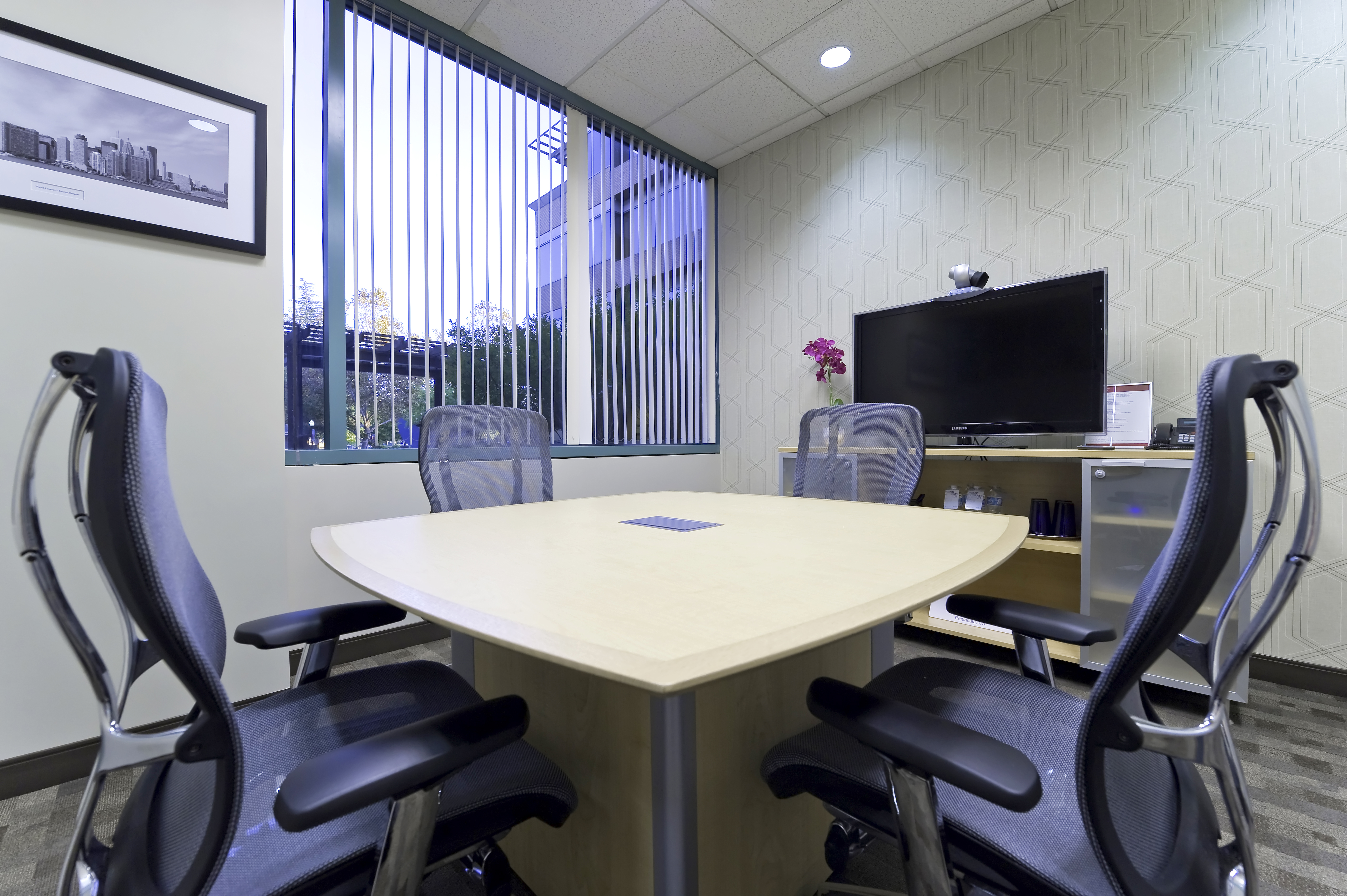 Executive Office View office space rent & lease, executive furnished office suites